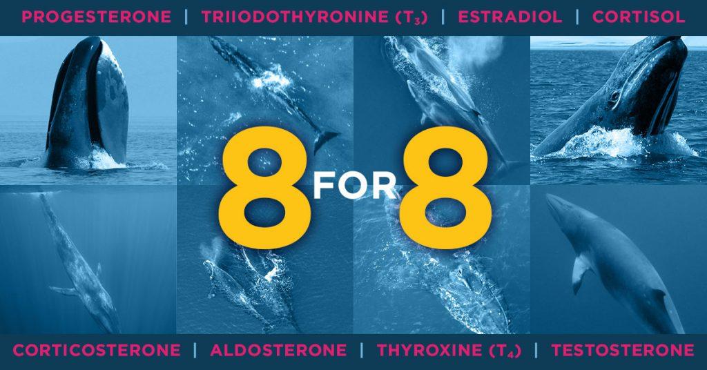 Progesterone, Triiodthyronine, Estradiol, Cortisol, Corticosterone, Aldosterone, Thyroxine, Testosterone